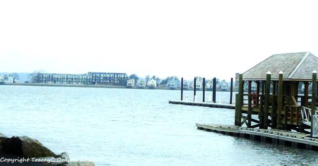 Coastal high tide and effects of sea level rise have waters sitting high along the wharf's in Newport. (photo Tracey C. O'Neill 2014)