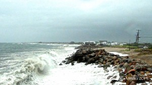 Matunuck Headlands, August 2014 (Photo Tracey C. O'Neill for TraceyC-Media)
